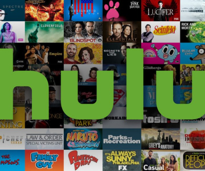 Hulu continues to grow on the back of a viewer first strategy and the deep pockets over 80 million viewers provide.